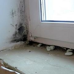 Окна от застройщика в квартире эконом-класса: как распознать? и что делать?